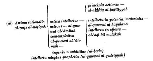 A History of Muslim Philosophy - Page 51